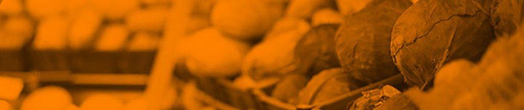 Bild på grönsaker i en butikshylla